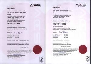 ISO 9001 Total engleza